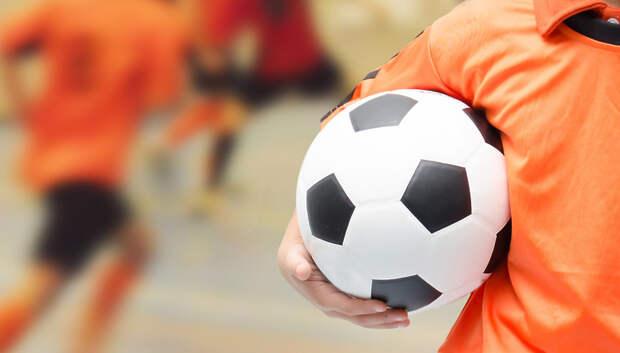 Спортивные секции Подольска переведут на дистанционную работу с 21 марта