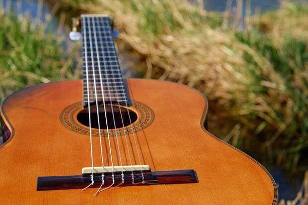 Гитара/Фото: pixabay.com