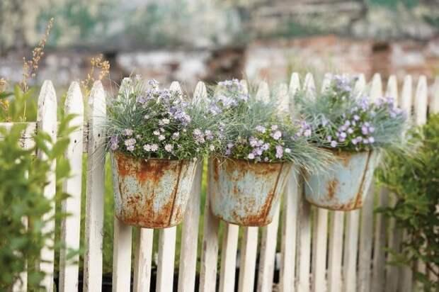 ведра с цветами на заборе