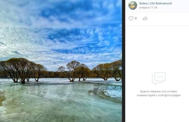 Фото дня: необъятная красота парка «Покровское-Стрешнево»