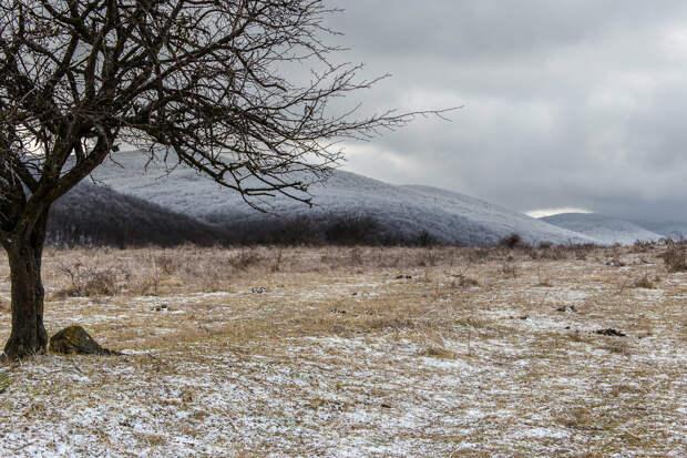 На фото: зима в Крымских горах близ города Старый Крым.