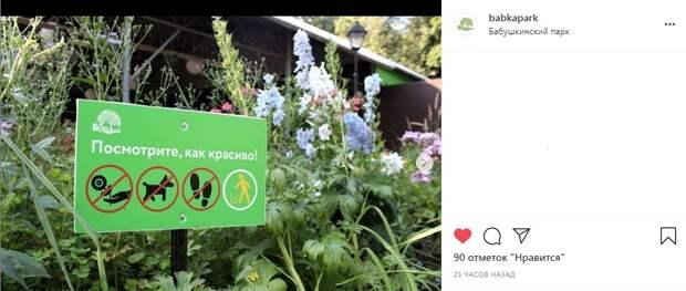 Фото дня: в Бабушкинском парке установили необычные таблички