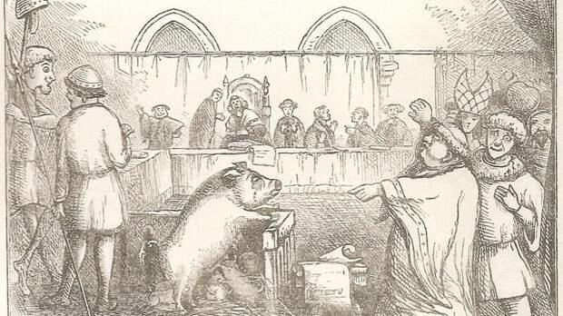 В средневековой Европе животных судили наравне с людьми. Самое раннее упоминание этого — суд над свиньёй в 1266 году в Фонтеней-о-Роз