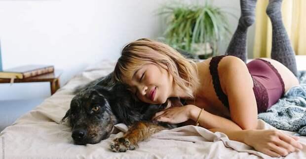 Ученые установили, что женщинам лучше спать с собаками, а не с мужчинами