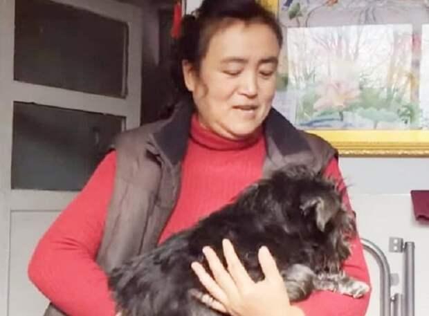 Женщина и пес