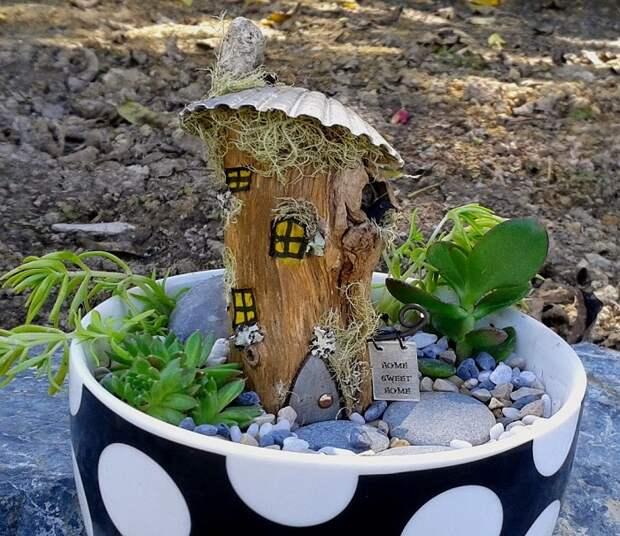 В качестве контейнера для мини-сада годится практически любая емкость – все зависит от вашей фантазии.
