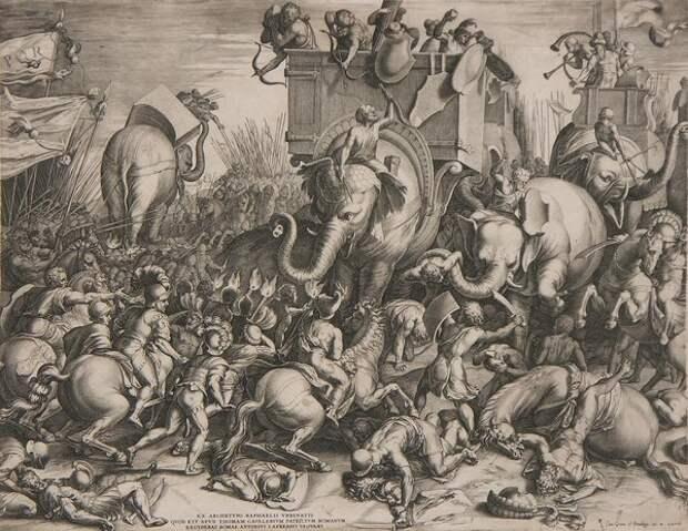 Корнелис Корт «Битва при Заме»