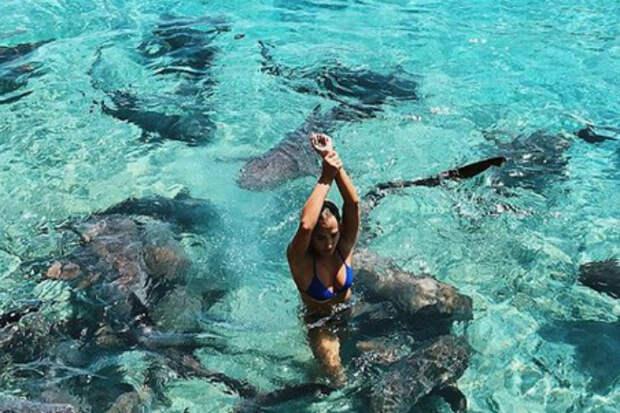 Девушка захотела сделать сэлфи в бассейне с акулами и поплатилась