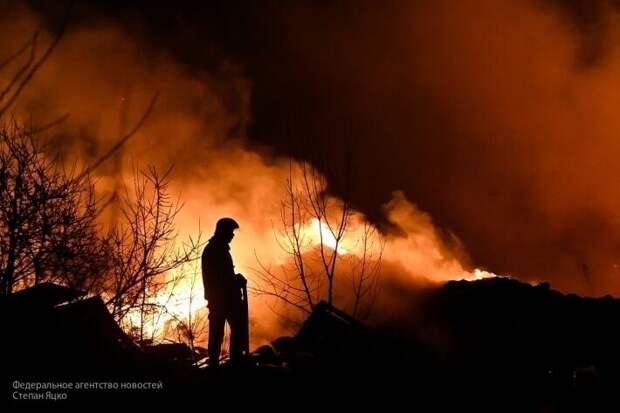 Россия готова оказать Украине помощь с пожарами в Чернобыле