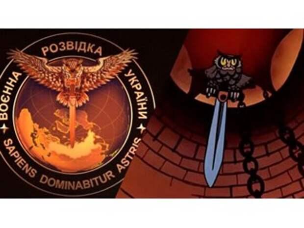 Украинская разведка заблудилась в «российских войсках» на Донбассе