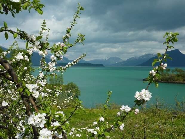fjords17 Самые красивые фьорды Норвегии