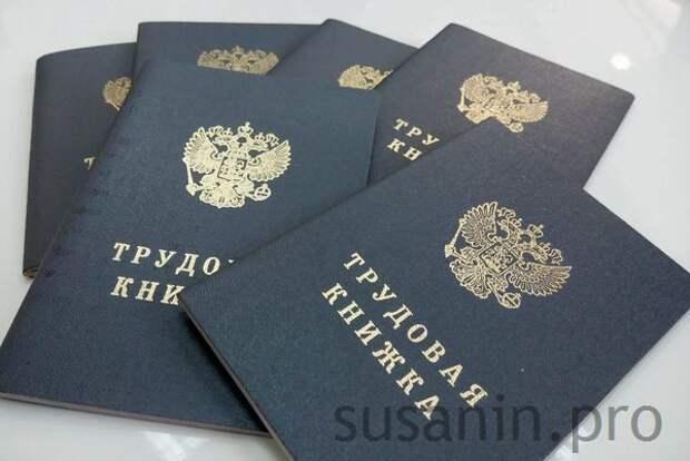 Более 20 тыс жителей Удмуртии перешли на электронные трудовые книжки