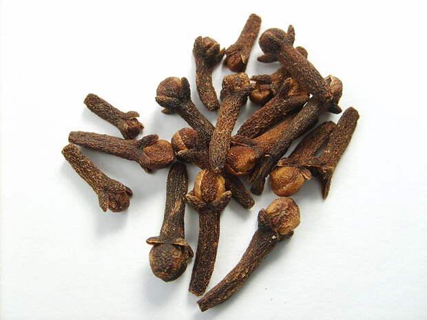 гвоздика бутоны применение в кулинарии эфирные масла и ароматерапия