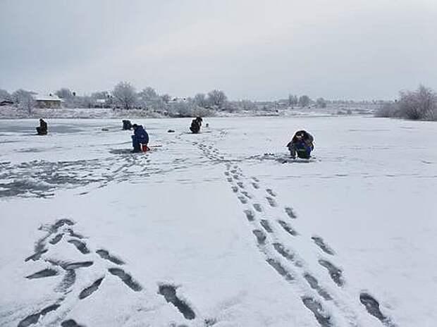 В такую погоду ловить на пруду одно удовольствие. Фото: Геннадий Шеляг.