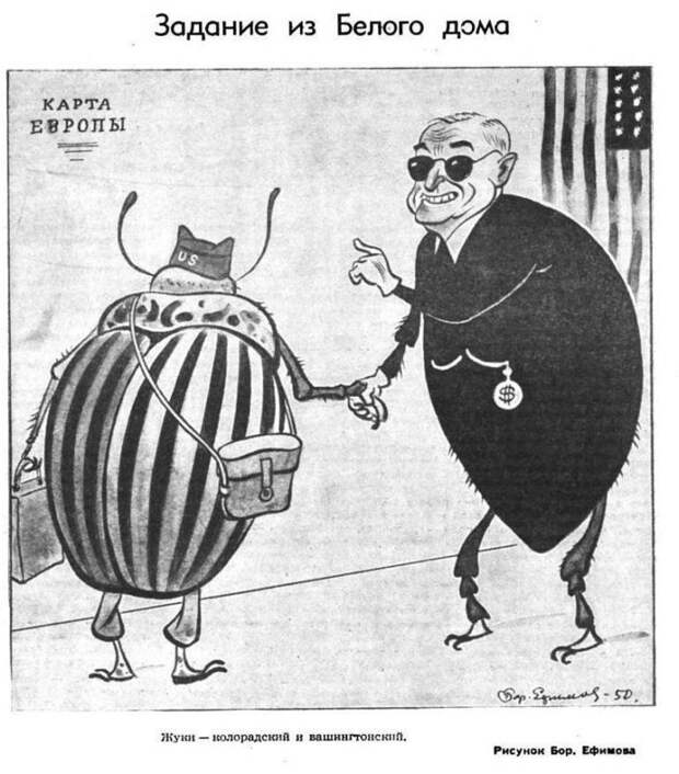Колорадский жук, как орудие пропаганды