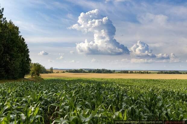 Белорусские просторы (16 фото)