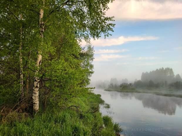 Туманный рассвет и банные веники. 10 кадров настоящей деревни с берегов Керженца