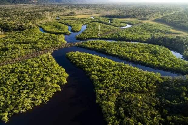 Полноводная Амазонка
