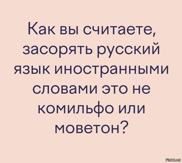 На изображении может находиться: текст «как вы считаете, засорять русский язык иностранными словами это не комильфо или моветон? Fishkinet»