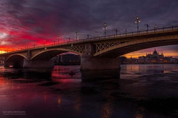 Фотограф 5 лет охотился за светом, чтобы показать настоящую красоту Будапешта