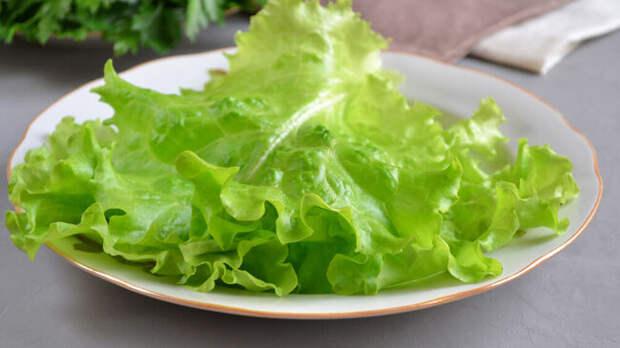 Дачникам на заметку - Лучшие сорта семян салата для открытого грунта