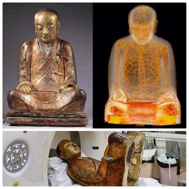 Вот, к примеру, недавно одного из таких самоизолянтов нашли в древнем изваянии: чего только не сообщат публике эти фамильные портреты с изваяниями, если поглядеть на них сквозь объектив рентген-аппарата