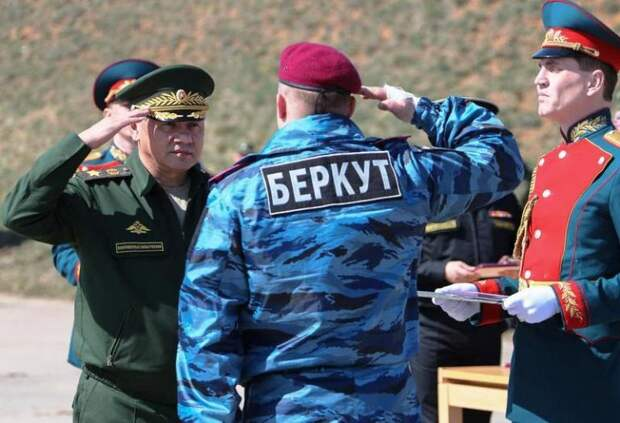 Паника на Украине: Шойгу готов ввести российских миротворцев в Киев