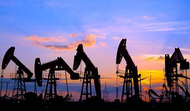 Генсхемы развития нефтегазовой отрасли до2035 года рассмотрит сегодня кабмин