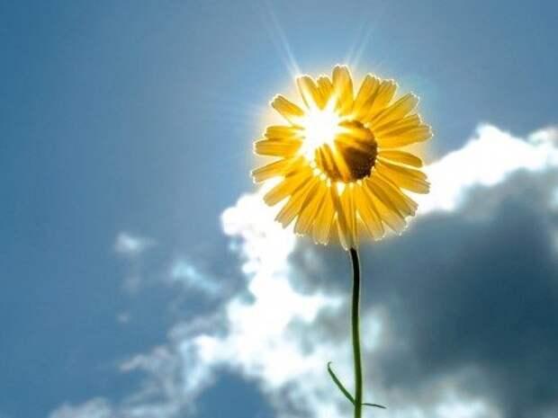 10 вещей, от которых нужно избавиться, чтобы обновить свою энергетику