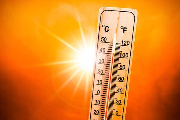 В Южном Медведкове проверили работу общественного транспорта в жару