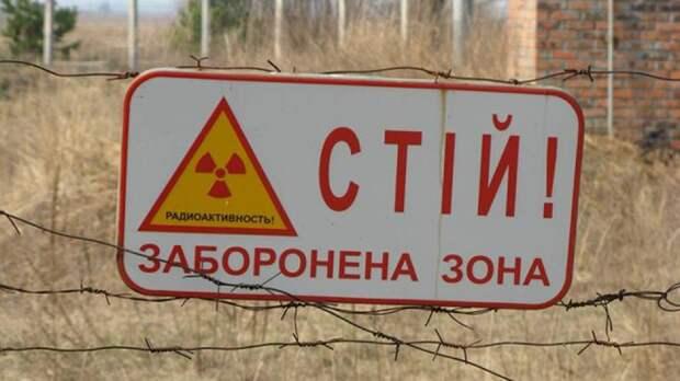 Ученые оценят влияние радиации на ос в Чернобыле