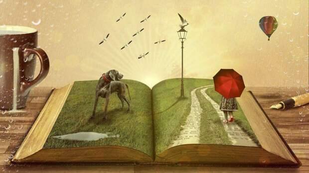 Книги. Фото: из открытых источников