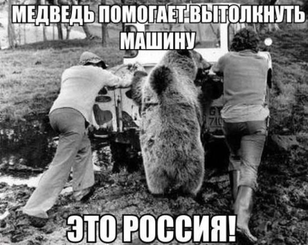 1450102720_avtoooprikk12
