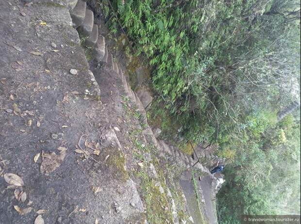 Лестница на гору Уайна-Пикчу. Вид сверху. Источник https://www.tourister.ru/responses/id_20494