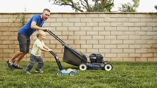 Как выбрать газонокосилку: от механики до робота