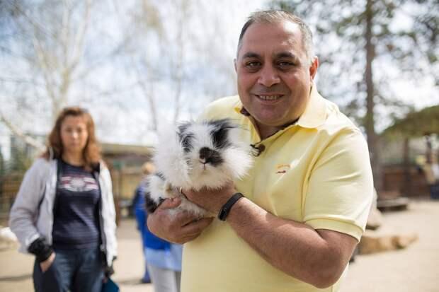 Специалисты посоветовали москвичам сделать прививки домашним животным