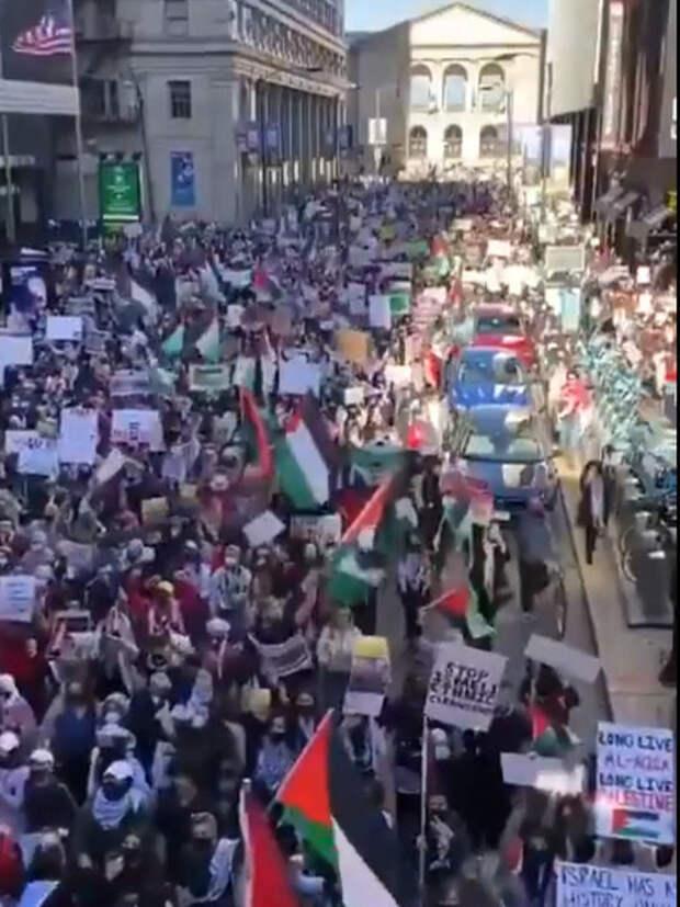 Акции в поддержку палестинцев начались в США и Канаде