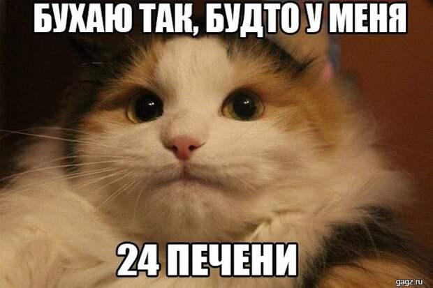 podborka_horoshego_nastroeniya_gagz_ru_001488