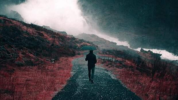 Дожди, холод и туман. О погоде в Алтайском крае 24 сентября