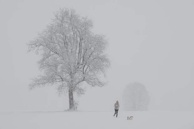 Winter joys by Igor  on 500px.com