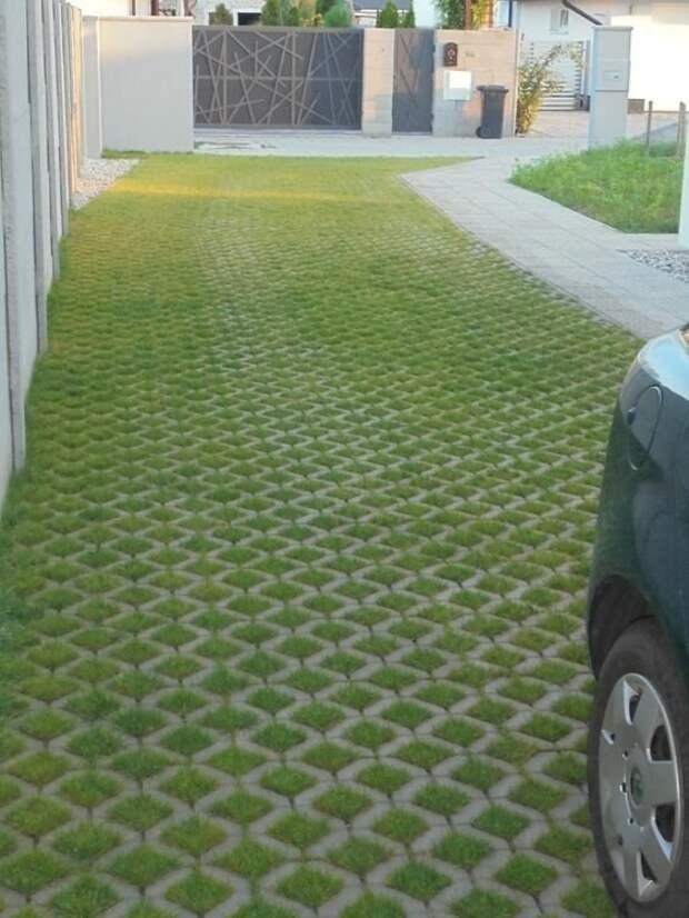 А есть специально предназначенные для травы плитки с отверстиями, которые уже продаются с семенами. Достаточно просто их положить и полить Фабрика идей, дизайн, зеленые дорожки, красота, украшение