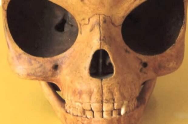 Найден череп инопланетянина