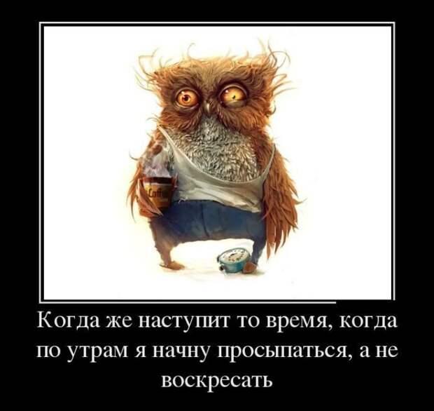 1448795513_rzhachnye-demotivatorki-19_xaxa-net.ru