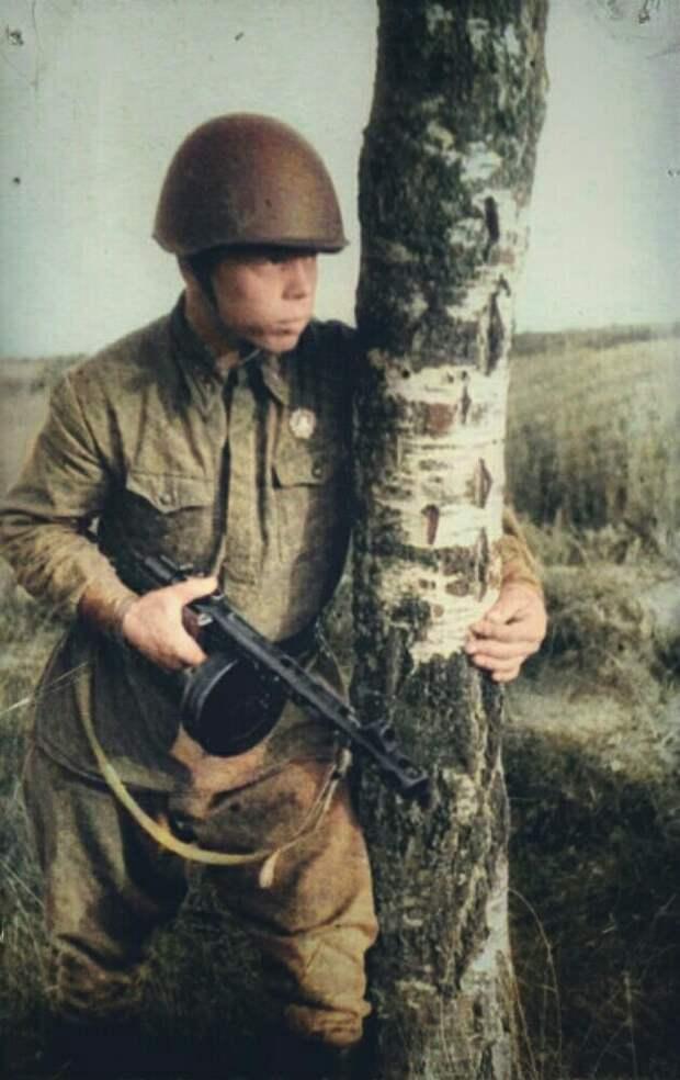 Юный советский богатырь уничтожил почти целый батальон гитлеровцев. Подвиг Федора Чистякова