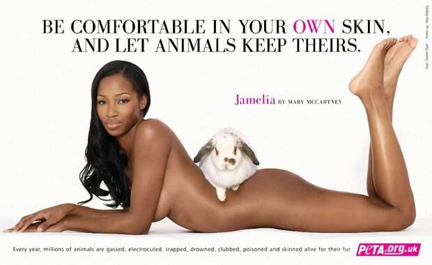 Знаменитости, которые разделись для участия вантимеховой кампании PETA