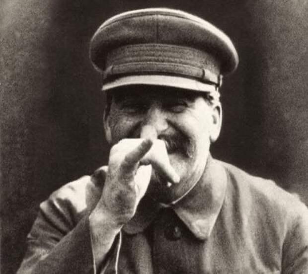 "Юлия Витязева: Сталин ""под ёлочку"""