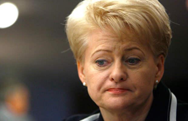 Президент Литвы признала свой провал и попросила других все исправить