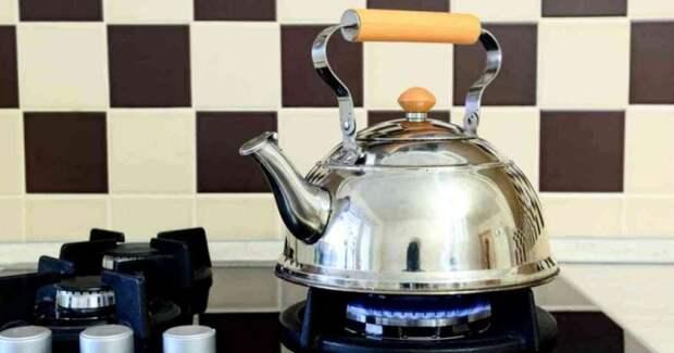 Как очистить чайник от накипи – чем опасен налет, особенности разных видов, как часто проводить процедуру?