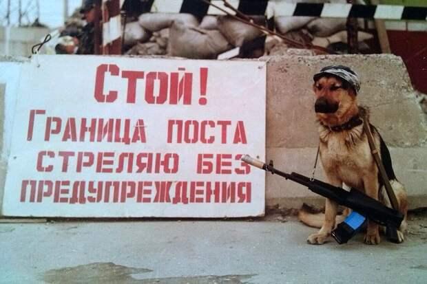 Мильва и ее хозяин во время службы в Дагестане. Фото: из личного архива