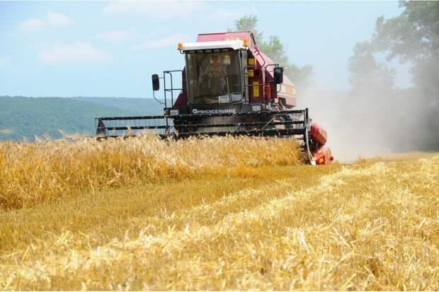 Урожай на крымских полях будут собирать роботы